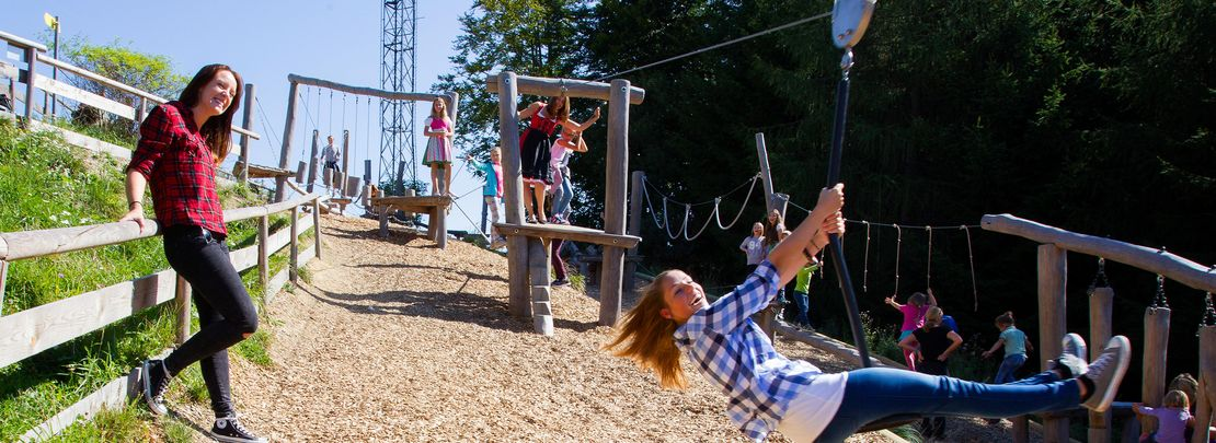 low ropes course on the top of Grünberg, ideal for the whole family